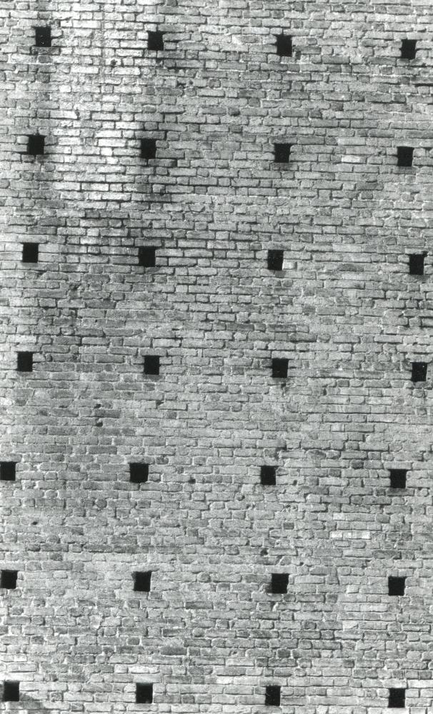Le Mur bruyant - 2010