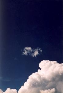Le Souvenir - 2010