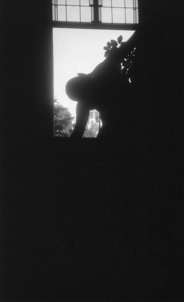 Silhouette - 1994