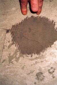 L'incertain - 2007